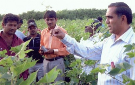 GGRC officer explaining farmers about irrigation