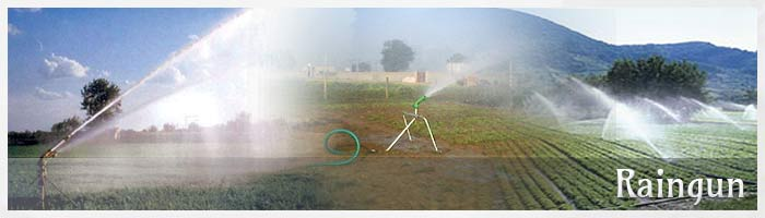 RainGuns, Landscapping Irrigation Systems, rainguns, duplex rainguns, irrigation rainguns, Sprinkler Irrigation, Dust Control Rain Gun Sprinkler, Portable Rain Gun Sprinkler manufacturer, Agriculture Rain Gun Sprinkler Systems, Rain Guns.Designed & Developed by Rudra Softwares www.rudrasoftwares.net